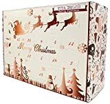 Vita Dulcis Whisky Adventskalender Edition 1-24x0,02l