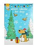 Good Boy Weihnachten Hund Adventskalender (Packung mit 3 Stück)