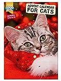 Good Girl 910691/1829 Adventskalender für Katzen