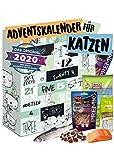 Katzen Adventskalender 2020 I Adventskalender für Katzen mit 24 delikaten Snacks I Geschenkset mit ausgefallenen Kabbereien für Ihre Katze zum Verschenken I Katzenkalender
