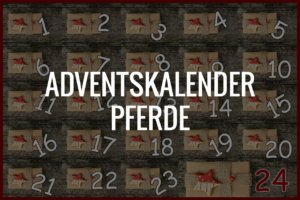 Adventskalender Pferde