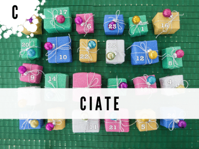 ciate-adventskalender
